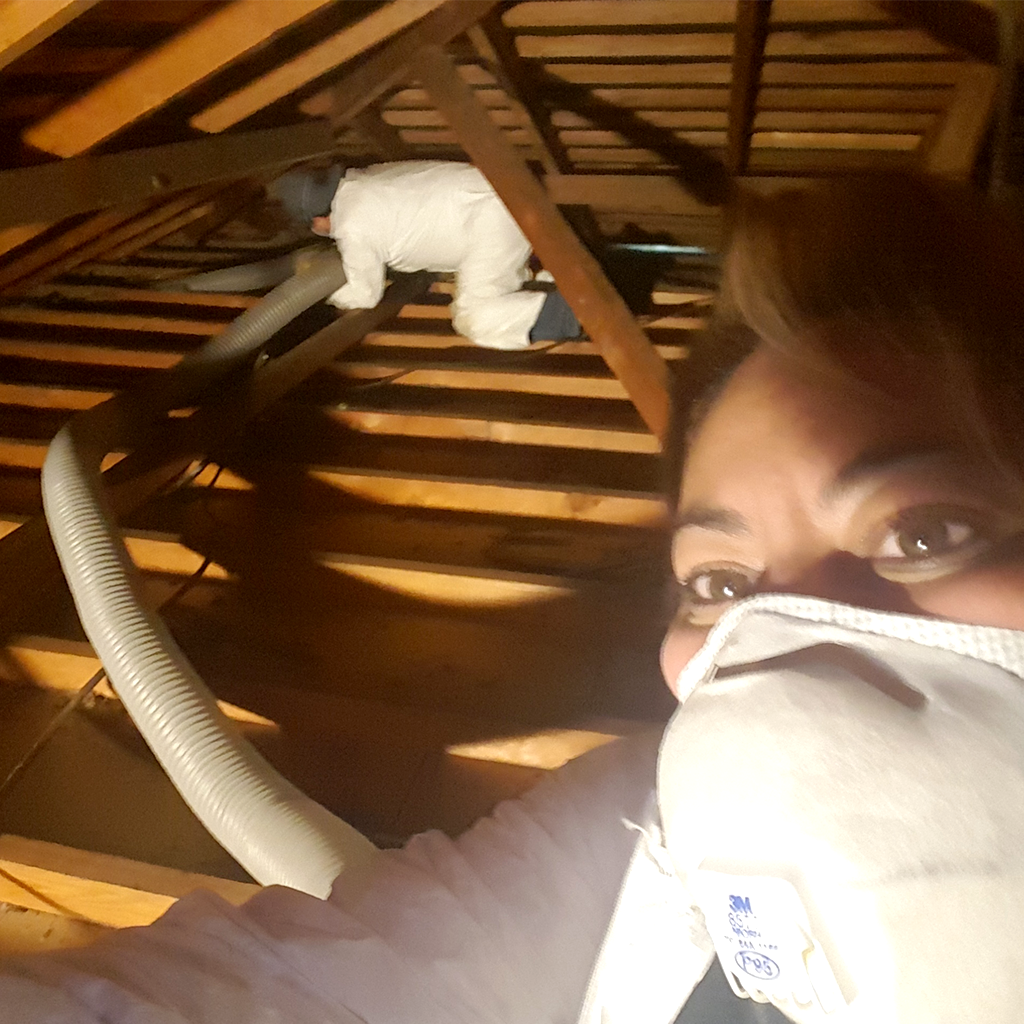 About Us- pictured cleaning an attic